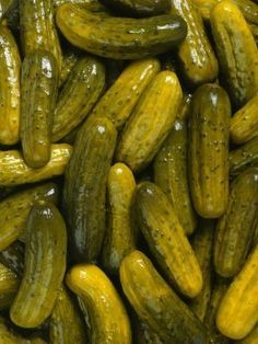 How to Make Homemade Canned Crisp Dill Pickles - Easy Basic Recipe I tried this and they were soooo good! They're best with homegrown cucumbers :) (Best Food Dehydrator) Canning Dill Pickles, Kosher Dill Pickles, Sour Pickles, Sweet Pickles, Dill Pickle Recipe Using Dill Seed, Crispy Dill Pickles Recipe, Polish Pickles Recipe, Home Canning, Zucchini Chips
