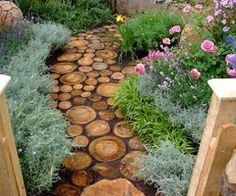 trunk slices as pavers