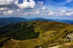 Tarnica #2 | zoom | digart.pl
