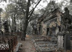 Die Zeit steht still ... Friedhof Olsany in Prag.