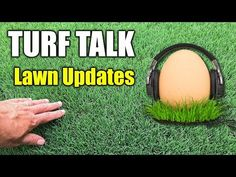 Lawn Care Talk - Tips - Updates - YouTube