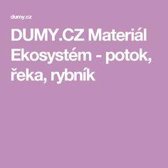 DUMY.CZ Materiál Ekosystém - potok, řeka, rybník School