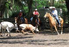 Cracker Cowboys of Florida - Bing Images