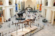 Your family will love these 14 spots for kid-paleontologists. Our recommendations help you start digging for dinosaur fossils on-site.