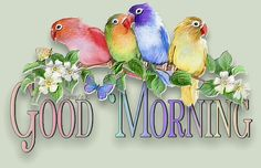 Good Morning day birds friend days of the week good morning greeting Good Morning Gif Images, Good Morning Picture, Good Morning Messages, Good Morning Good Night, Morning Pictures, Good Morning Wishes, Good Morning Quotes, Night Quotes, Morning Sayings
