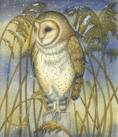 The Tender Owl (print) Kate-Green