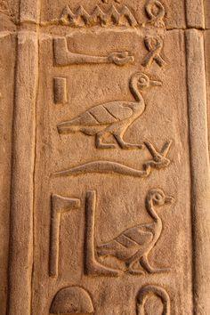 https://flic.kr/p/bVWR1d | Egypt | The Temple of Kom Ombo