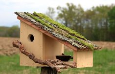 Solid Pine, Solid Wood, Wooden Hut, Garden Design, House Design, Growing Greens, Nesting Boxes, Bird Houses, Birds
