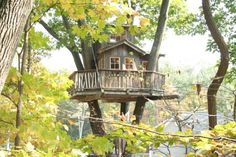 Such a cute little cottage treehouse :)