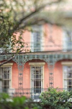New Orleans French Quarter photography for sale. Esplande Ave, a fine art photograph of a beautiful home along the oak tree lined Esplanade Ave. Title: Esplanade Ave ******************************************************** ABOUT YOUR PRINT: Oversized Wall Decor, Southern Architecture, Architecture Art, New Orleans Art, White Sangria, New Orleans French Quarter, French Colonial, Photography For Sale, Tree Line
