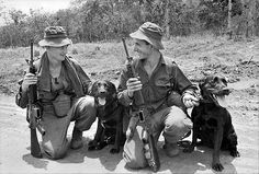 Tracker dogs, 1967 in South Vietnam from Australian War Memorial collection