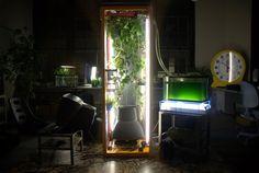 Biomodd: A living game computer as social sculpture
