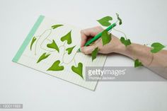 Foto de stock : Drawing of vine coming alive off of page