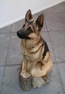 Carved from wood.at first glance i thought this was real! amazing artwork Holzschnitzen , Carved from wood.at first glance i thought this was real! amazing artwork Carved from wood.at first glance i thought this was real! Tree Carving, Wood Carving Art, Wood Carvings, Art Sculpture En Bois, Dog Tree, Wooden Art, Animal Sculptures, Tree Art, Cool Artwork