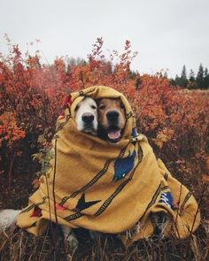 We're feeling the cold, just like these two!
