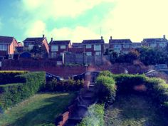 View from the window of my room, Exeter, UK.