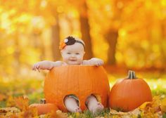 Looks like something Grandma Bridget should try. Baby Pumpkin Pictures, Halloween Baby Pictures, Photo Halloween, Pumpkin Patch Pictures, Baby First Halloween, Pumpkin Photos, Baby In Pumpkin, Fall Baby Pictures, Baby Girl Photos