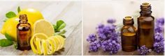 Here at Aroma Celesta, you can buy 100% pure essential oils, wonderful gift of nature for your well-being and a stable health.https://goo.gl/vBfkJb