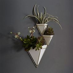 Trigg Wall Planters #westelm