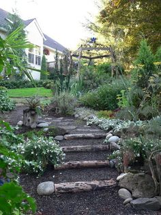 Reusing a downed tree for garden steps.