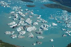 Bear Glacier Icebergs - Kenai Fjords National Park