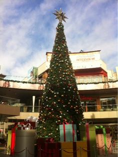 friends in america: Santa Monica Christmas