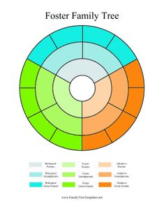 This printable circle family tree is divided into thirds and tracks biological parents in blue, foster parents in green and adoptive parents in orange. Free to download and print