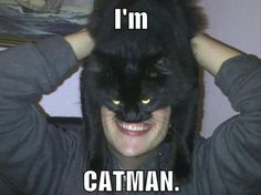 I'm CATMAN. - LOLcats is the best place to find and submit funny cat memes and other silly cat materials to share with the world. We find the funny cats that make you LOL so that you don't have to. Funny Cat Photos, Funny Cats, Funny Animals, Funny Pictures, Humorous Cats, Draw Animals, Cat Memes, Funny Memes, Hilarious