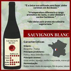 Descubra a Sauvignon Blanc! Sauvignon Blanc, Cabernet Sauvignon, Guide Vin, Wine Jobs, Cocktail Recipes, Cocktails, Wine Education, Wine Cheese, Vitis Vinifera