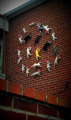 Home Sweet Hampden (Christmas edition)...if ANYONE sees these crawling white cats in Baltimore (ceramic or plastic), please let me know! I want one soooo bad!!!