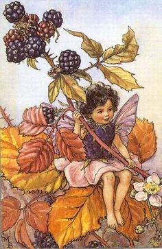 The Blackberry Fairy from Flower Fairies of the Autumn - Cicely Mary Barker. I made this dress for my 6 year old daughter many moons ago. Have all the Flower Fairy Books. Love them.