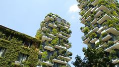 Vertical forest (Bosco Verticale)