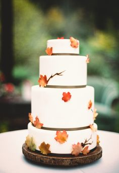 A recent styled shoot I photographed at Storybook Farm a few miles outside of Seattle, Washington. Fall-themed wedding with pumpkins and fall colors and foliage! Styled by Pink Blossom Events (Seattle WA) and Fena Flowers. Cake by Midori Bakery.