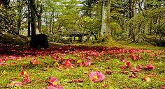 Il giardino di Villa Marlia in Toscana on www.italytraveller.com