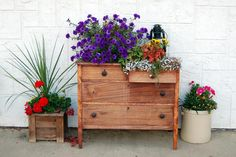 A mini garden's small size will limit the variation of planters you can choose. These DIY rustic planters for your mini garden are the solution. Outdoor Rooms, Outdoor Gardens, Outdoor Furniture, Outdoor Projects, Diy Projects, Project Ideas, Garden Projects, Old Wooden Chairs, Rustic Planters