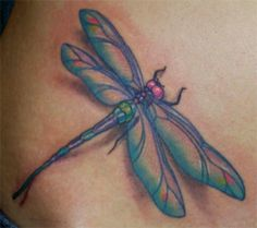Dragonfly tatoo! I really want this! But smaller and in a different place. Love it!