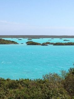 Let's explore the beauty of Chalk Sound located in Providenciales in the Turks and Caicos islands.