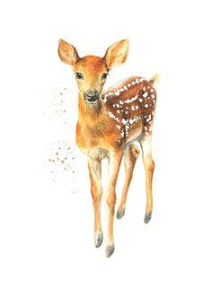 illustrationen reh illustration janine sommer deer. Black Bedroom Furniture Sets. Home Design Ideas