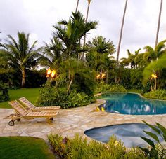 Pool Tropical Landscaping Ideas tropical landscape ideas along fences | tropical landscape for