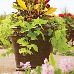 Better Homes and Gardens Monteverde Planter, Multiple Sizes, $28