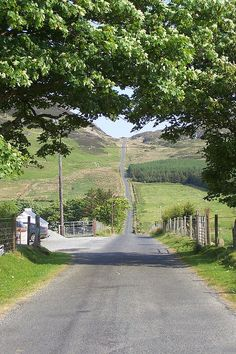 The road To Mamore Gap, Co. Donegal, Ireland. Well worth seeking out if you're ever in the region.