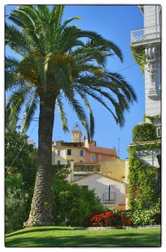Le Cannet - French Riviera, France
