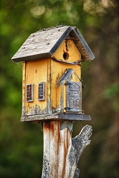 yellow, bird house on a stump or fence post