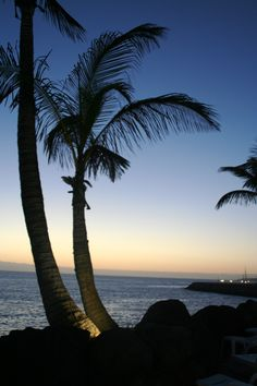 Enjoy impressive #sunsets in Canary Islands, a pleasure for the senses at #Hotel Jardin Tropical. #Tenerife #holidays #relax #palmtrees