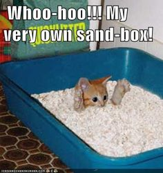 Whoo-hoo!!! My very own sand-box!