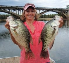About Crappie Crappie (pomoxis annularis & pomoxis nigromaculatus) is a species of fish native to North America. There are two types of species of crappie, white crappie (pomoxis annularis) and black crappie (pomoxis nigromaculatus). They live in freshwater and are one of the most popular game fish among anglers. Their habitat will usually consist of ...