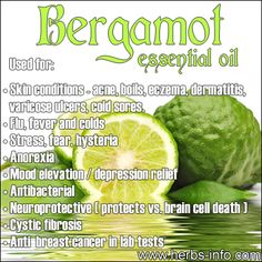 Bergamot Essential Oil uses Order here… Bergamot Essential Oil Uses, Doterra Essential Oils, Essential Oil Blends, Yl Oils, Lemongrass Essential Oil, Healing Oils, Aromatherapy Oils, Healing Herbs, Medicinal Herbs