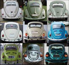 VW Evolution