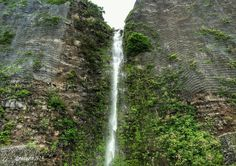 Cascade route litorale  #reunion974 #route #montagne #cascade #pluie #reunionparadis #reuniontourisme #iledebeauté #ilevanilles #iledelareunion #naturelove #nature974 #nature #ile_en_ile #landscape #lareunion #gotoreunion #photography_nature #photography_my_island by nature_974