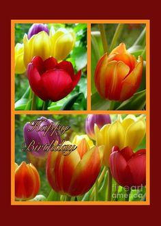 Rainbow Tulips Birthday Greeting 3 Greeting Card